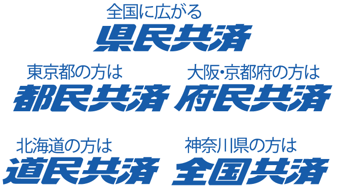 京都 府民 共済
